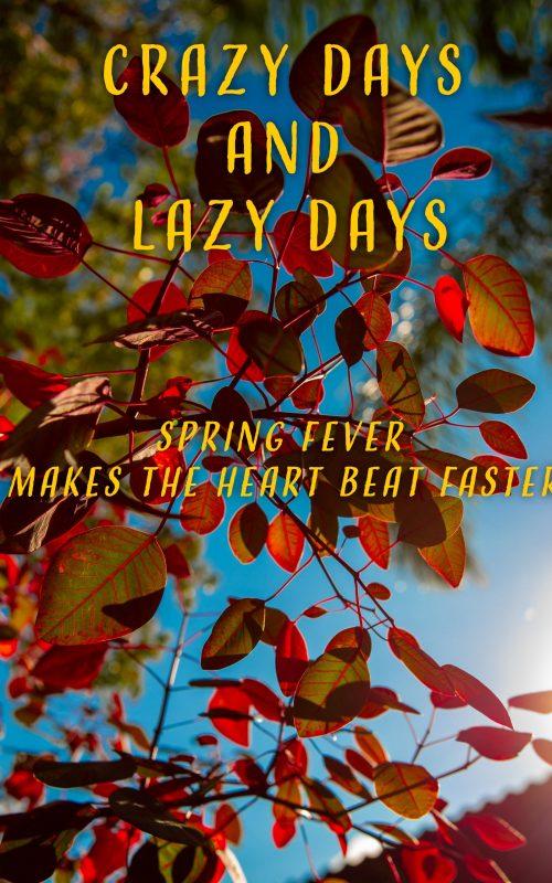 Crazy Days and Lazy Days by Sarsi Grace and Jenny Davis